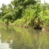II. ECOCRIME ? Rendre la Martinique Ecologique !